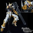 [IN STOCK] RG 1/144 GUNDAM SEED ASTRAY GOLD FRAME