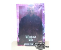 [IN STOCK] Breaking Bad Jesse Pinkman 1/6 Collectible Figure